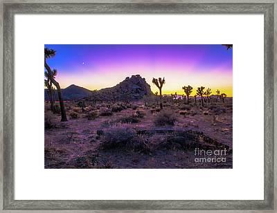 Jashua Tree Sunset California Framed Print