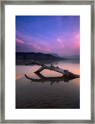 Jasper Lake Log Framed Print