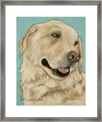 Jasper Framed Print by Pat Saunders-White