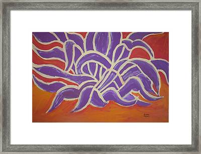 Java Aguave Framed Print by Lindsay St john