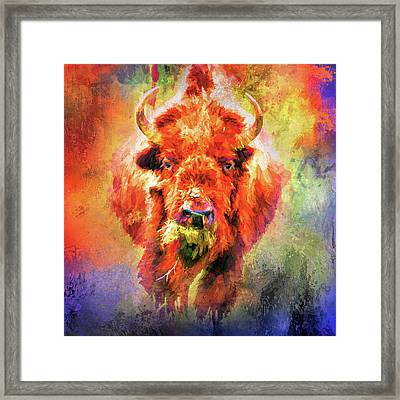 Jazzy Buffalo Colorful Animal Art By Jai Johnson Framed Print