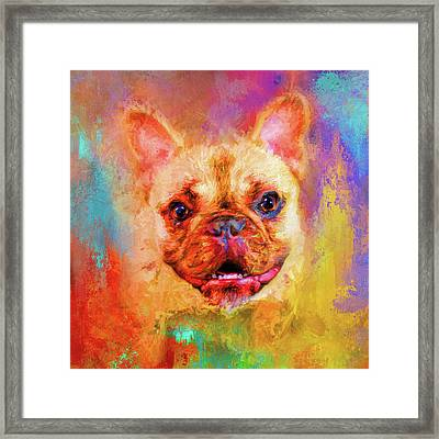 Jazzy French Bulldog Colorful Dog Art By Jai Johnson Framed Print by Jai Johnson