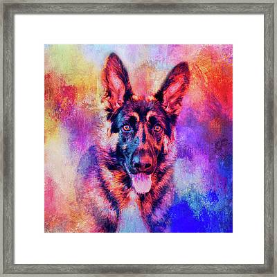 Jazzy German Shepherd Colorful Dog Art By Jai Johnson Framed Print by Jai Johnson
