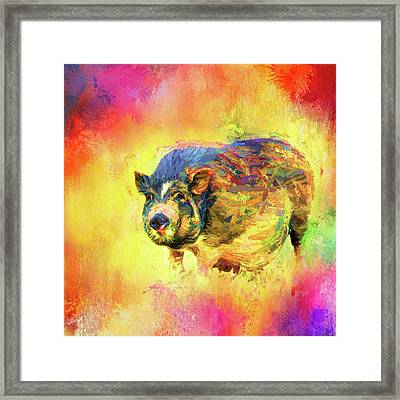 Jazzy Pig Colorful Animal Art By Jai Johnson Framed Print by Jai Johnson
