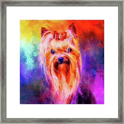 Jazzy Yorkshire Terrier Colorful Dog Art By Jai Johnson Framed Print