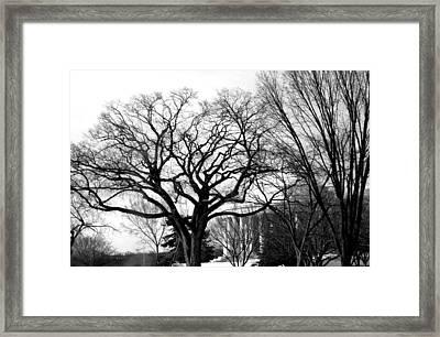 Jefferson Memorial - Distant View Framed Print by Fareeha Khawaja