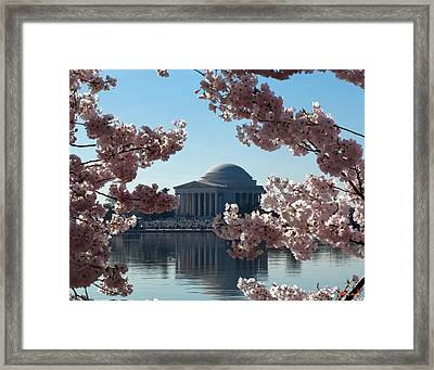 Jefferson Memorial At Cherry Blossom Time On The Tidal Basin Ds008 Framed Print by Gerry Gantt