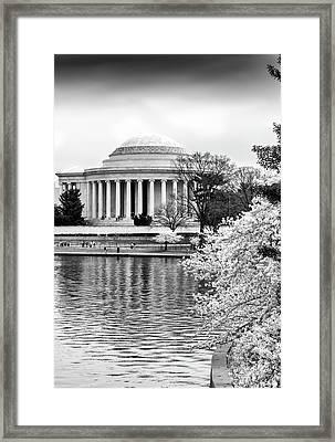Jefferson Memorial Cherry Blosum Time Framed Print