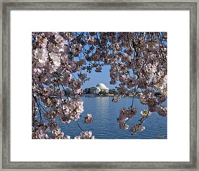 Jefferson Memorial On The Tidal Basin Ds051 Framed Print