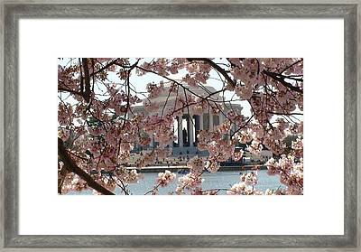 Framed Print featuring the photograph Jefferson Through The Cherry Blossoms by Charles Kraus