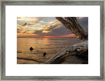 Jekyll Driftwood At Sunset Framed Print