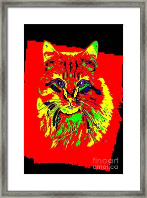 Jekyll The Cat Framed Print