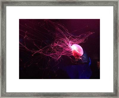 Jellyfish Art 2 Framed Print