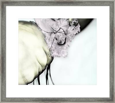 Jellyfish Framed Print by Marianna Mills