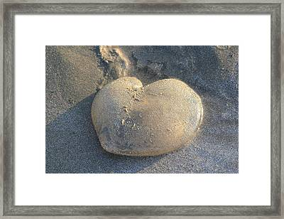 Jellyfish With A Big Heart Framed Print
