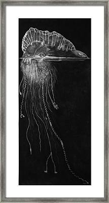 Jellyfish With Cords Framed Print by Elizabeth Comay
