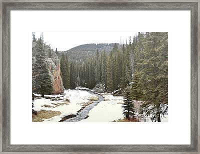 Jemez Mountains Forest Stream Framed Print by Andrea Hazel Ihlefeld