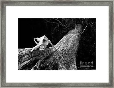 Jen On Big Log Framed Print