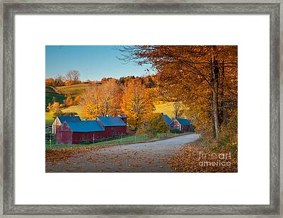 Jenne Farm Glow Framed Print by Susan Cole Kelly