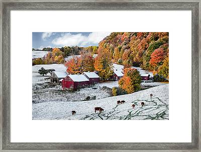 Jenne Farm, Reading, Vt Framed Print