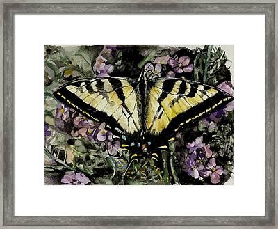 Jennifer's Delight Framed Print