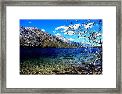 Jenny Lake Framed Print by Carrie Putz