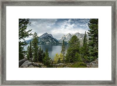 Jenny Lake Overlook Framed Print