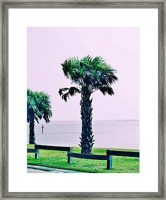 Jensen Causeway With Cross Processing Framed Print by Don Youngclaus