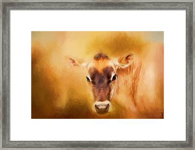 Jersey Cow Farm Art Framed Print by Michelle Wrighton