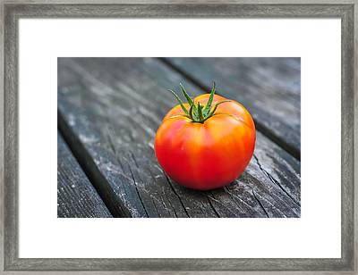 Jersey Fresh Garden Tomato Framed Print by Terry DeLuco