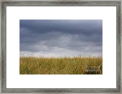 Framed Print featuring the photograph Remember When The Days Were Long by Dana DiPasquale