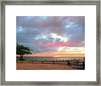 Jersey Summer  Framed Print by Susan Carella