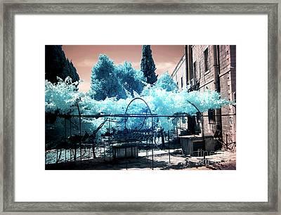 Jerusalem Courtyard Style Framed Print