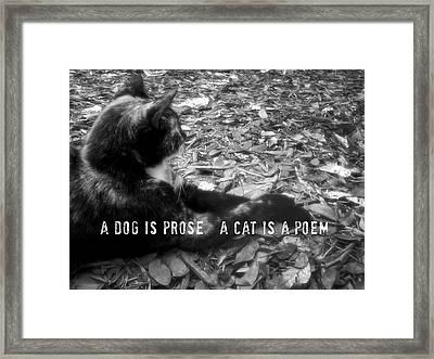 Jesk Quote Framed Print by JAMART Photography