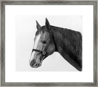 Jess Framed Print by Susan Tilley