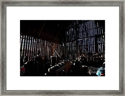 Jesse's In The Barn Framed Print