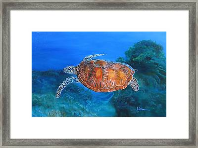 Jessie's Sea Turtle Framed Print by LaVonne Hand