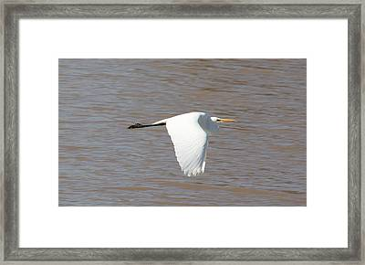 Jet Speed Framed Print by David Wahome
