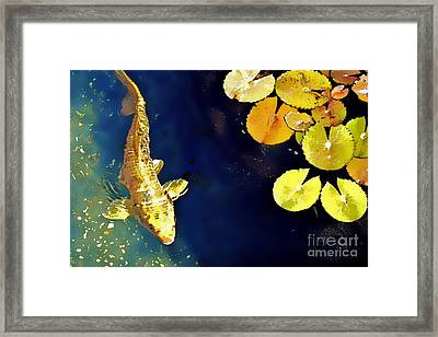 Jewel Of The Water Framed Print by Barb Pearson