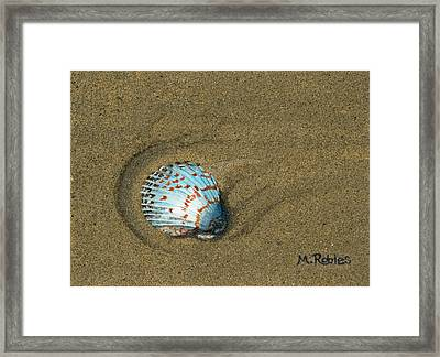 Jewel On The Beach Framed Print by Mike Robles