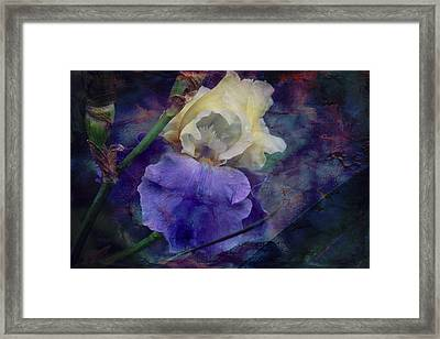 Framed Print featuring the photograph Jeweled Iris by Toni Hopper