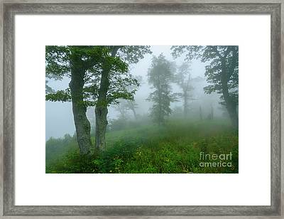 Framed Print featuring the photograph Jewell Hollow Overlook by Thomas R Fletcher
