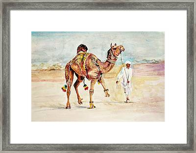 Jewellery And Trappings On Camel. Framed Print