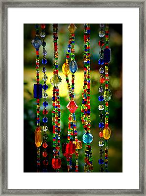 Jewels In The Sun Framed Print by Debra Martz