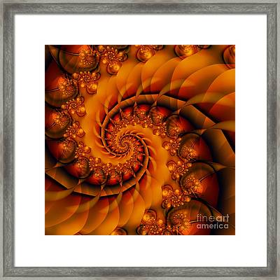 Jewels Of Autumn Framed Print by Michelle H