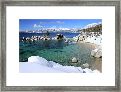 Jewels Of Winter Framed Print