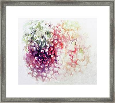 Jewels On The Vine Framed Print by Rachel Christine Nowicki