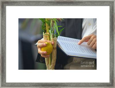 Jewish Sunrise Prayers At The Western Wall, Israel Framed Print