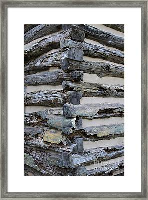Jiont-ing Framed Print by Robert Pearson
