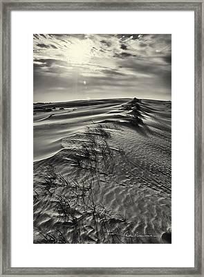 Jockey's Ridge Texture 7116 Framed Print